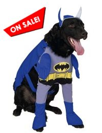 Brave & Bold Batman Dog Costume
