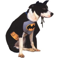 Deluxe Dog Grey Batman Costume