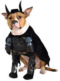Dark Knight Dog Halloween Costume
