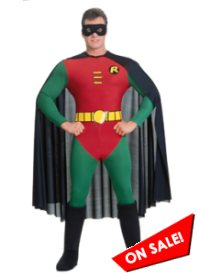 Adult Batman's Robin Halloween Costume